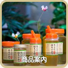 瀬戸の花はちみつのハチミツ商品ご案内